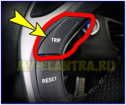 Кнопка Trip